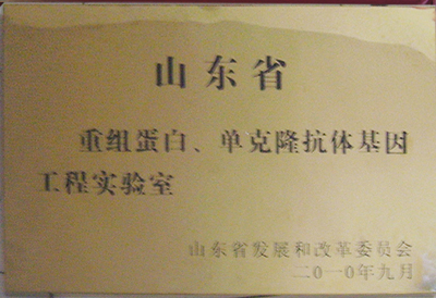 """公司实验室被认定为""""山东省重组蛋白、单克隆抗体基因工程实验室"""""""